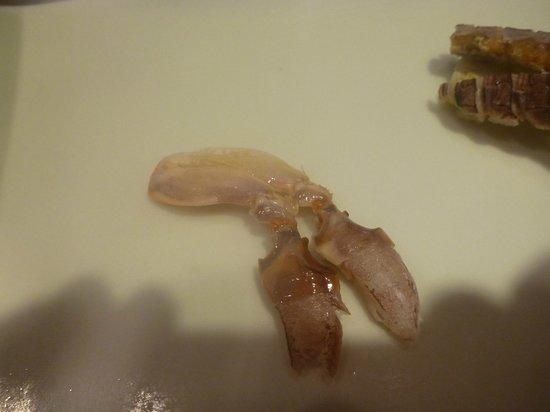 Fujizushi: hands of mantis shrimp
