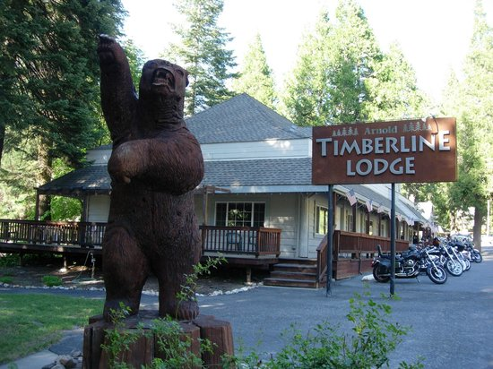 Timberline Lodge : Bike Bus & All Tours Welcome