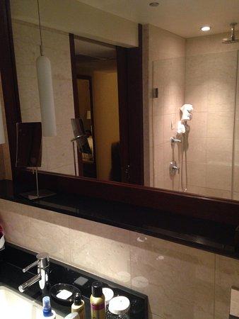 Millennium Knickerbocker Chicago : The bathroom w/ a walk in shower and cool shower head like a waterfall.