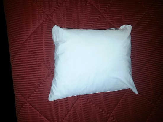 "Comfort Inn Port Orchard: Small Square Pillows - 18"" x 18"" max"