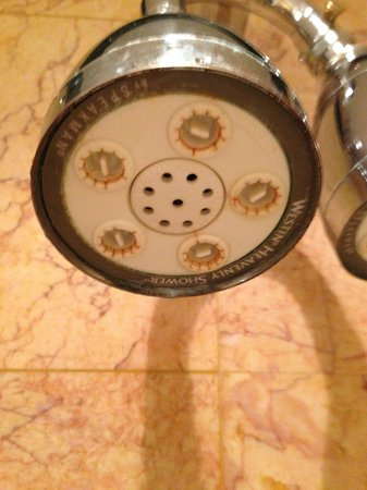 The Westin Excelsior, Rome: Dirty and clogged shower head