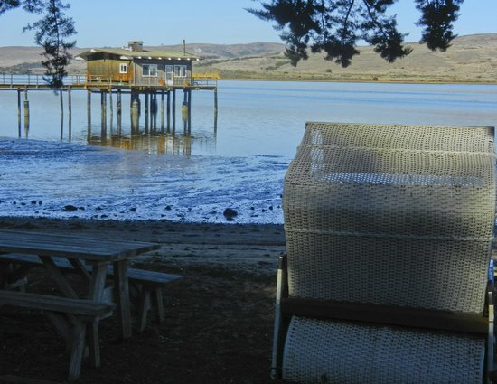 Dancing Coyote Beach: A sitting nook to enjoy Tomales Bay.