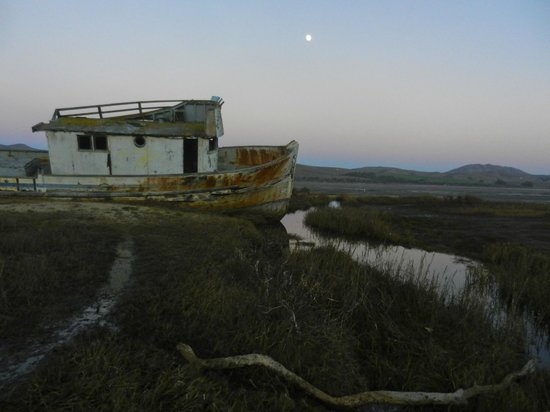 Dancing Coyote Beach: Pt. Reyes shipwreck.