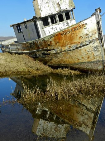 Dancing Coyote Beach: Pt. Reyes shipwreck.