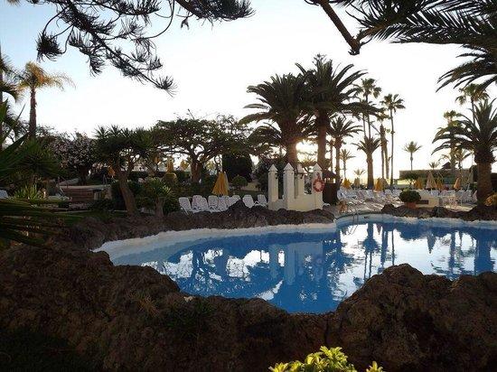 H10 Las Palmeras: Pool at hotel