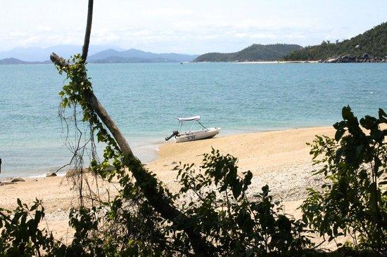 Bedarra Island Resort : Surrounding island beach