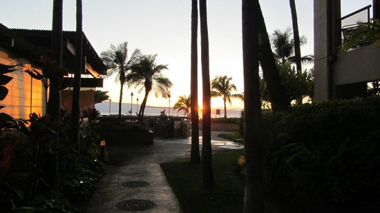 Sands of Kahana: Going to see the sunset around the restaurant