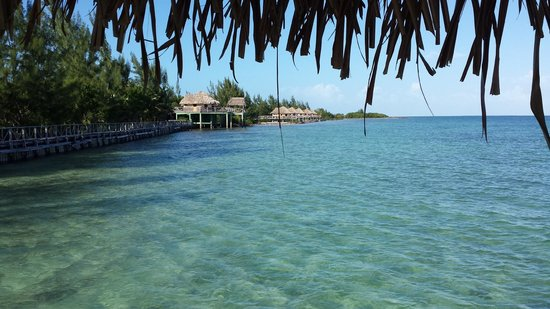 Thatch Caye Resort: View of the back of the island from the back deck