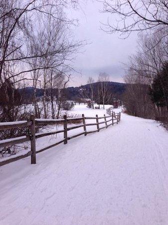 Stoweflake Mountain Resort & Spa: view from snowshoeing at Stoweflake