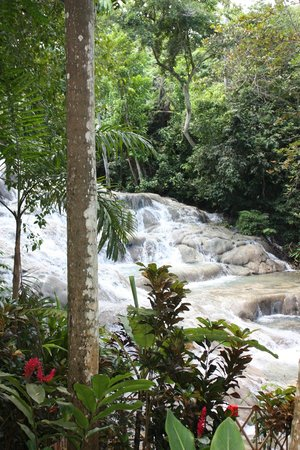 Dunn's River Falls and Park : Cascading water.