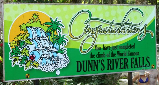 Dunn's River Falls and Park : Yeah!  You did it!