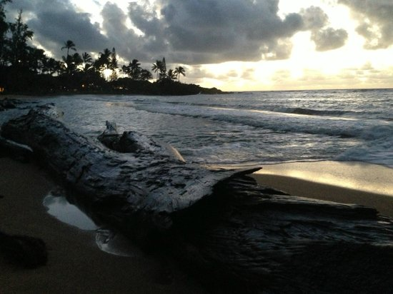 Kapaa Sands: Sunrise view from the beach out front