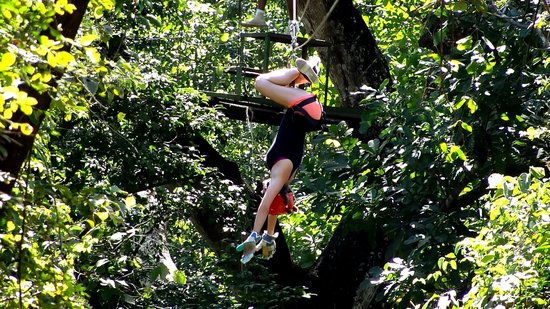 The Congo Trail Canopy Tour : So much fun!