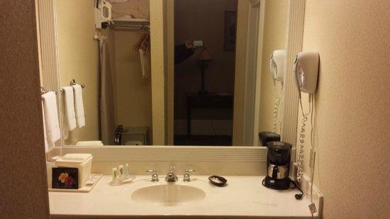 Quality Inn & Suites Maison St. Charles: sink