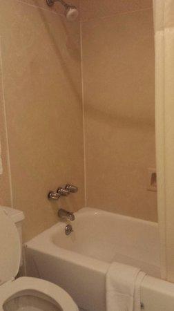 Quality Inn & Suites Maison St. Charles: bath