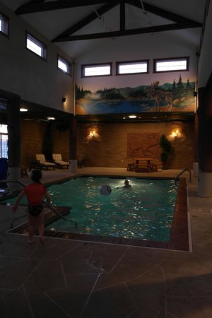 Stoney Creek Inn: Main Pool