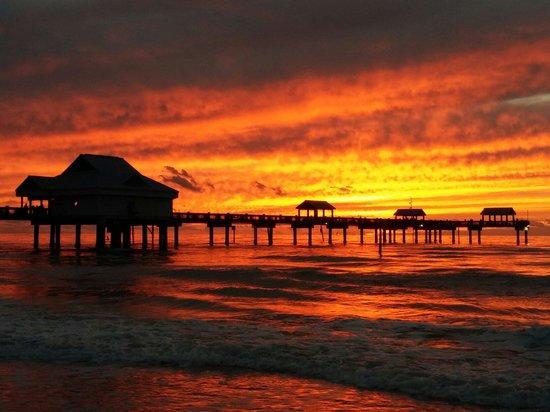 Pier 60: Beautiful