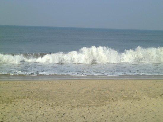 Cherai Beach : beach
