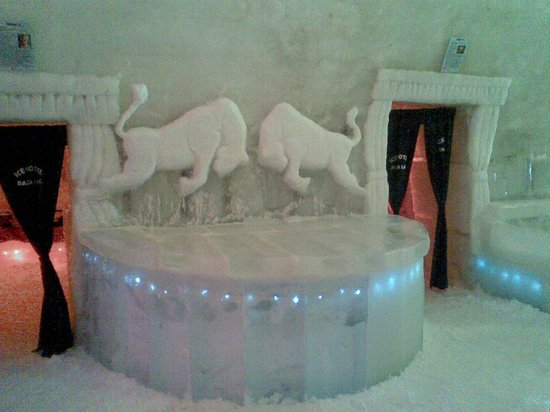 Ice Hotel Romania: Eishotel