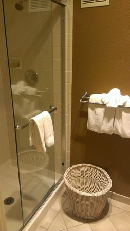 Governors Inn Hotel: shower