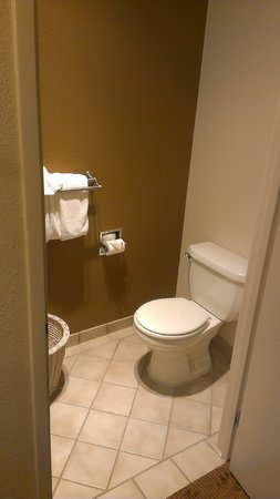 Governors Inn Hotel: toilet