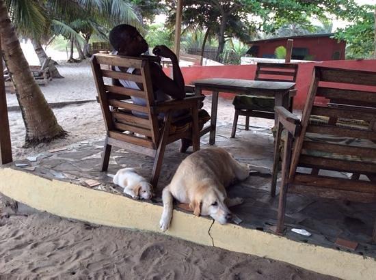 Hideout Lodge: entspannen
