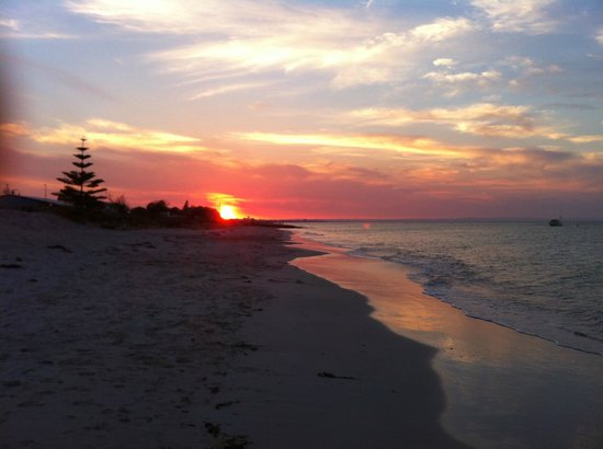 Baudins of Busselton: Another Fantastic Sunset-walk to our local beach in 7 minutes