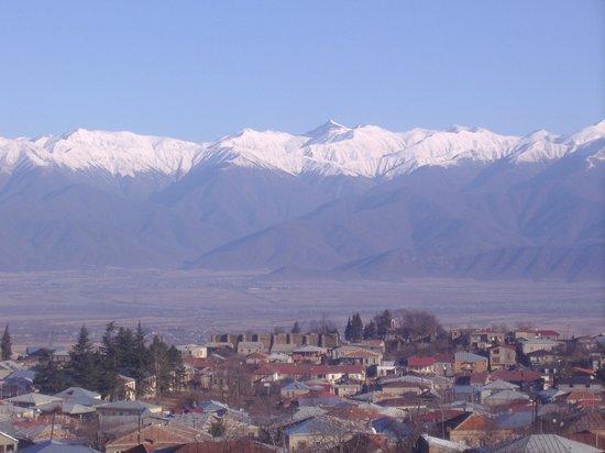 Kakheti Region, Georgien: Telavi David tours