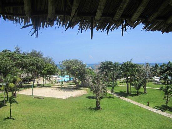 Kole Kole - Baobab Resort Diani: View from balcony.
