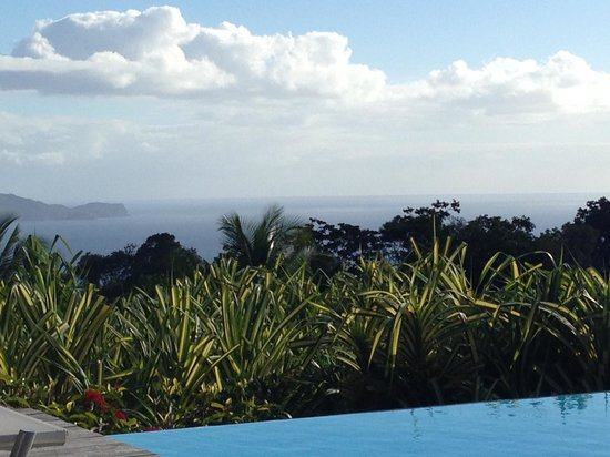 Le Jardin Malanga : Piscine