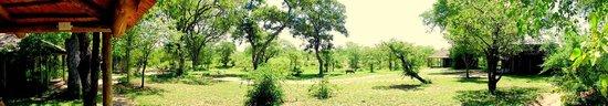 Timbavati Private Nature Reserve, Sudáfrica: View from Safari Tent