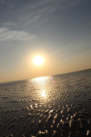 The Beach at Mandavi Palace: sun set