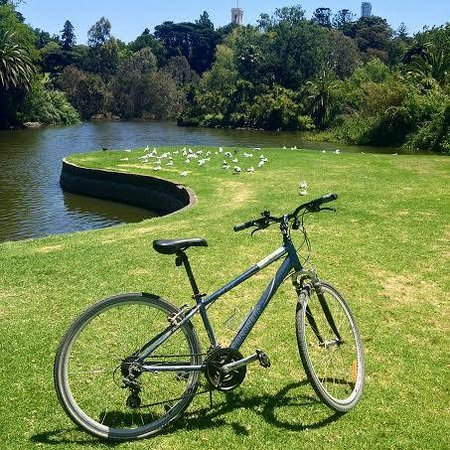 Rentabike Tours: The bike provided, in the botanical gardens (which you have to walk through, which isn't a probl