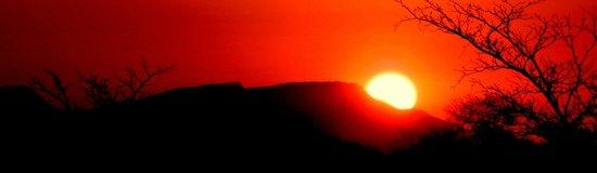 Shindzela Tented Safari Camp: Sunset on Safari