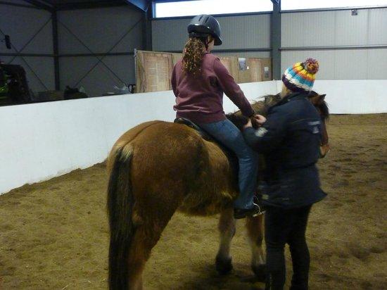 Icelandic HorseWorld: Zoe's turn