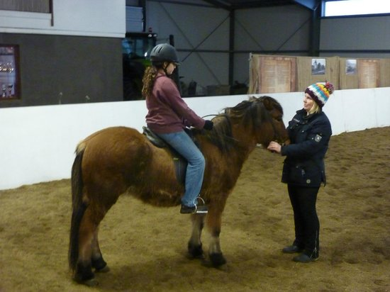 Icelandic HorseWorld: Our daughter given the chance to ride
