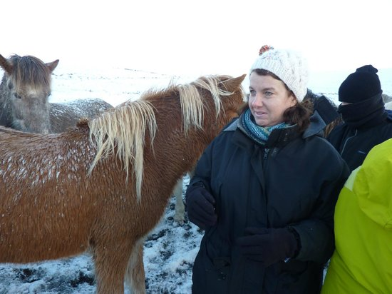 Icelandic HorseWorld: My wife out and about with the Icelandic Horse