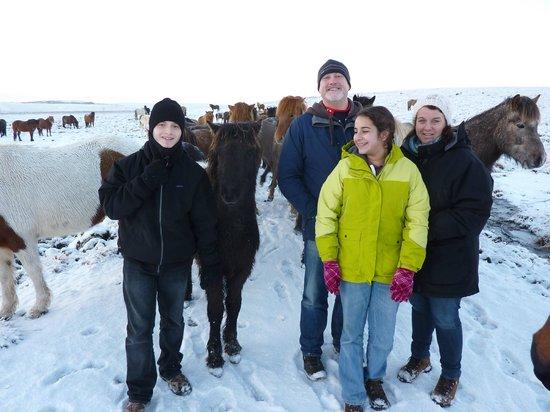 Icelandic HorseWorld: Family with the Icelandic Horse