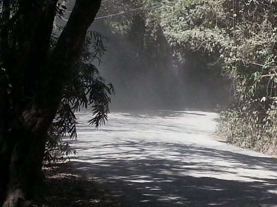 L'Acqua Viva Resort And Spa: Dust