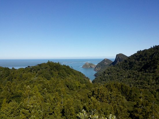 Huia Beach Store & Cafe: View out to the Tasman from Destruction Gully