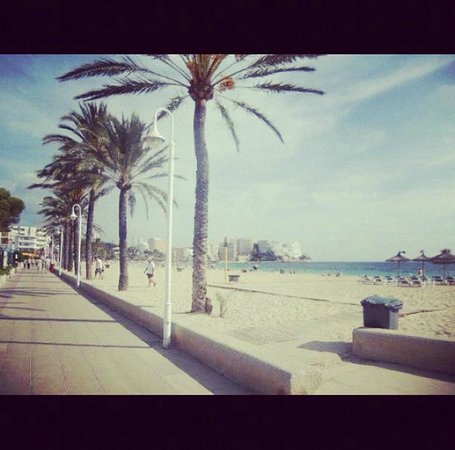 Globales Palmanova Palace Hotel: Magalluf Beach