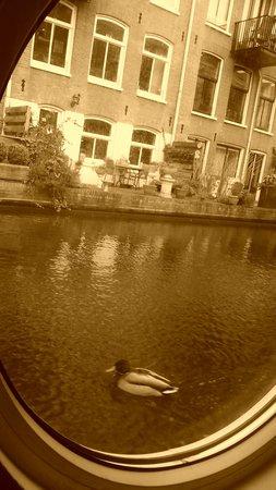 Ark16: risveglio del mattino =) voglio vivere per sempre qui!