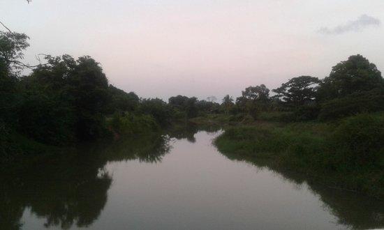 Heritance Kandalama: On the way to the hotel