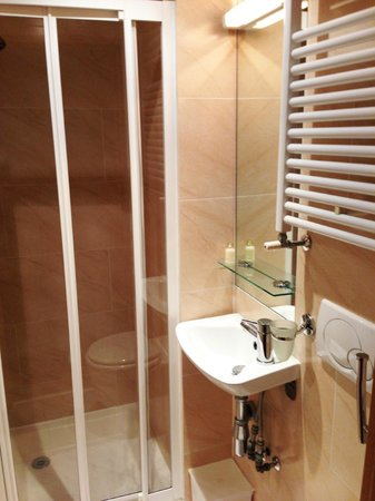 Studios2Let Serviced Apartments - Cartwright Gardens: little bathroom ultra clean