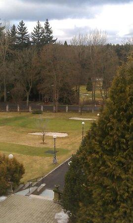 Parkhotel Golf: Вид из окна номера