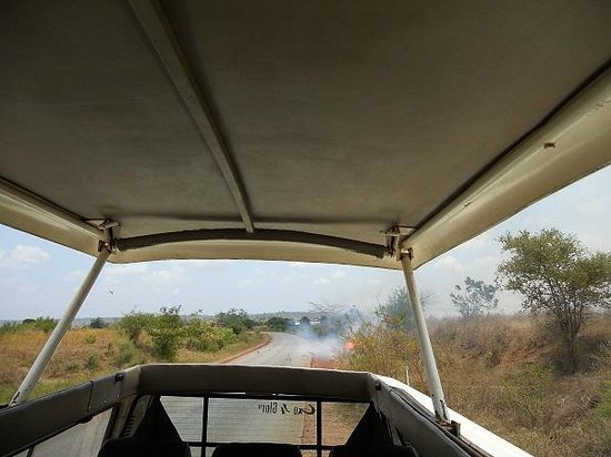 Steve & Richard Day Tours & Safaris : Very nice transport Van from Steve and Richards
