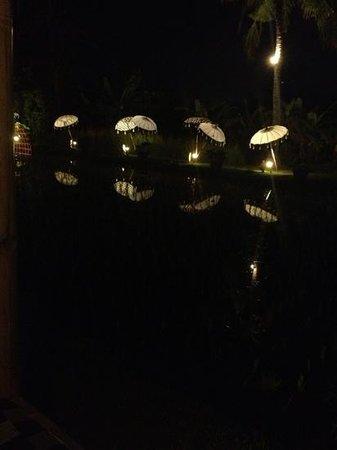 Sardine: umbrella decorations alongside the rice paddy