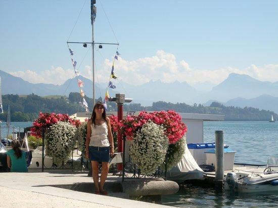 Lake Luzern : Sus flores