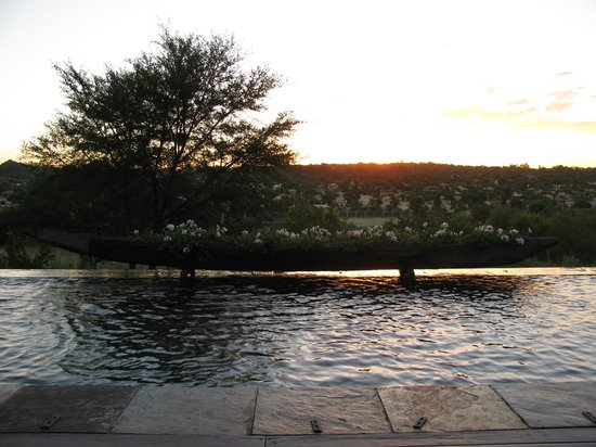 Aloe Lane Guest Lodge: Relaxing pool with sunset