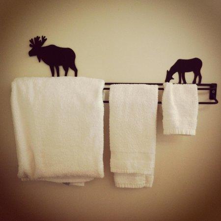 Grand Superior Lodge : Bathroom decorations